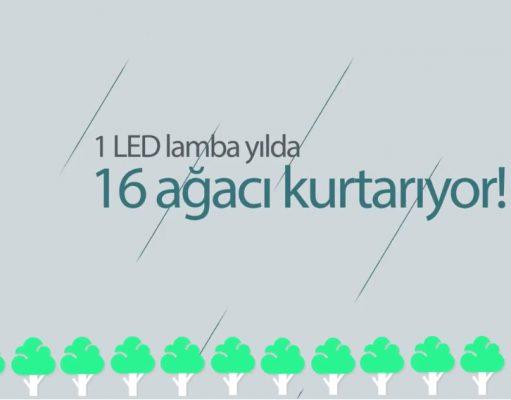 Çevre Dostu LED Lambaları Keşfedin…